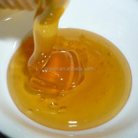 Premium quality fresh pure natural comb honey for sale to everybody