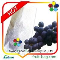 Grapes growing bags paper bag cover