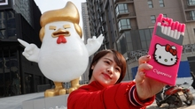 Inflatable Hatches Giant Trump Chickens,inflatable chicken Archive Trump,inflatable Rooster
