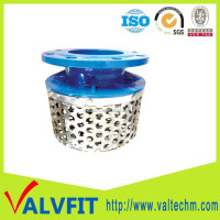 Hot sale Ductile iron stainless steel basket strainer