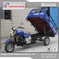 175cc water cooled Cargo three wheel motorcycle with closed box adult electric tricycle
