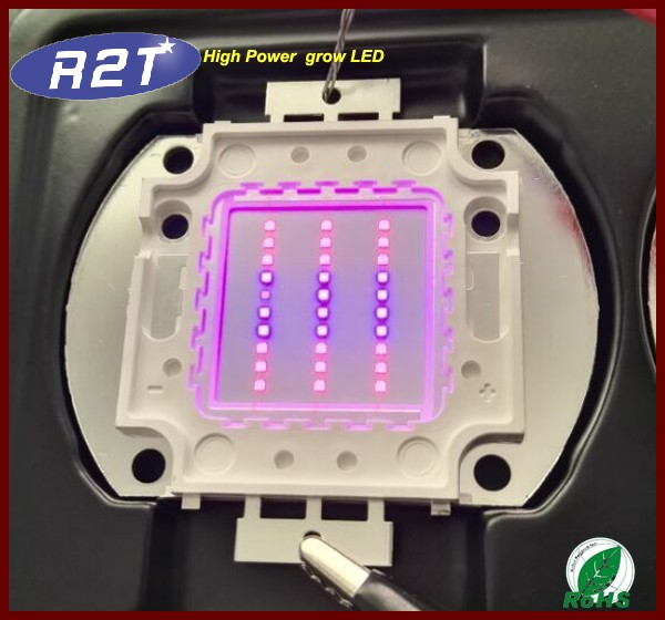 Grow led light Plant factory using Plant LED Chip