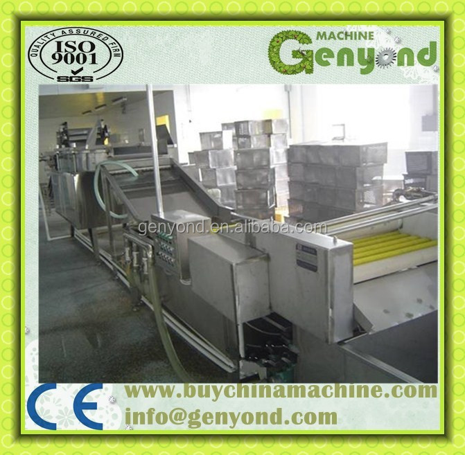 Leafy vegetable cleaning and cutting line / cabbage cleaning plant
