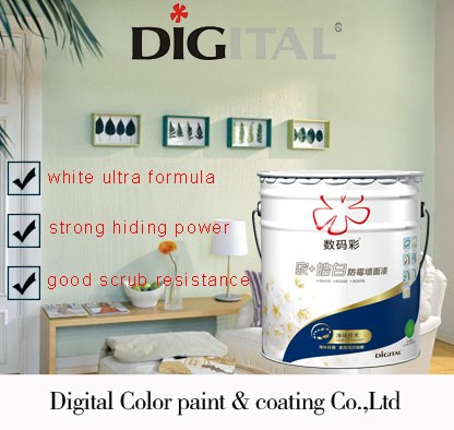 Mildew resistant white interior wall paint