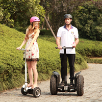 Top quality Wholesale Most popular electric chariot scooter