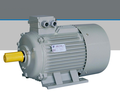 Y2 series three phase 200kw 315kw ac electric motor