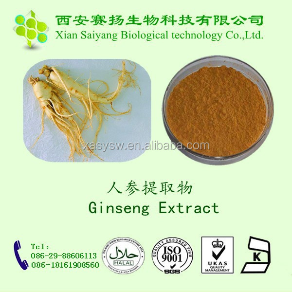 Natural Panax Ginseng Extract Powder Supplier Hot sell in USA