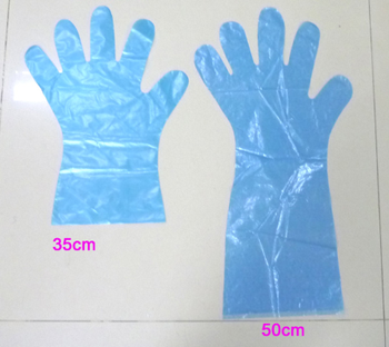 Free sample long sleeve disposable plastic apron or PE glove for slaughtering use