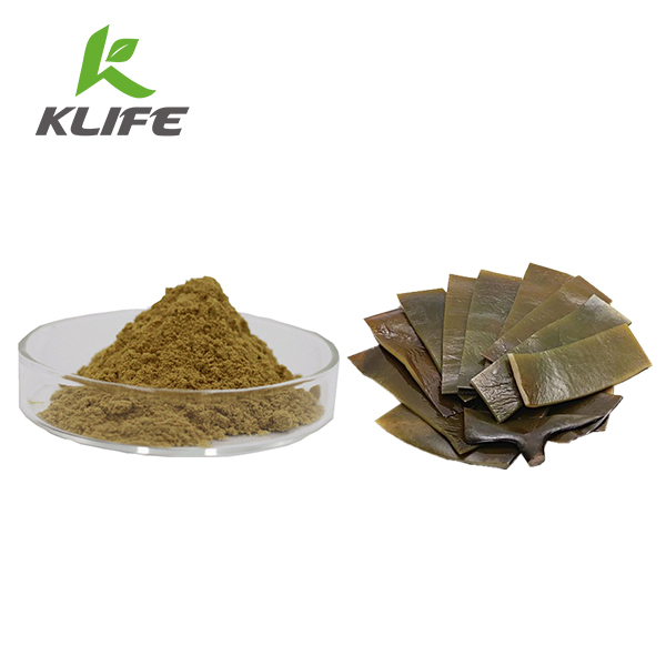 High Quality 100% natural fucoidan powder/ laminaria japonica extract