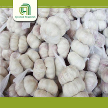 Chinese organic fresh garlic