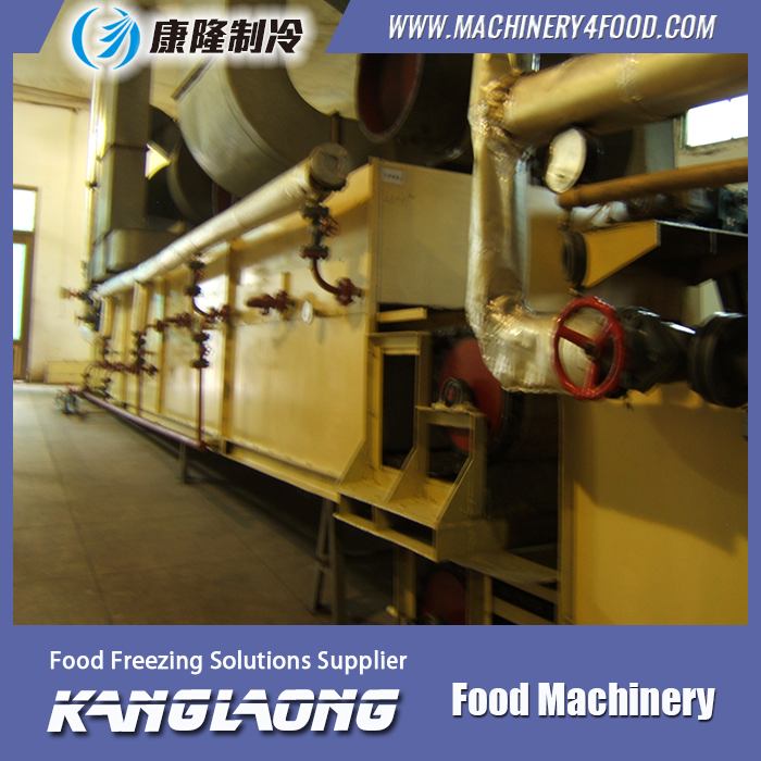 Hot Sale vegetable and fruit drying machine for sale