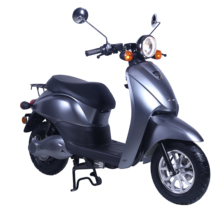E2go electric scooter with swap lithium battery