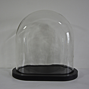 oval glass dome with MDF wooden base