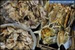 Dried fish from Palawan / Philippines