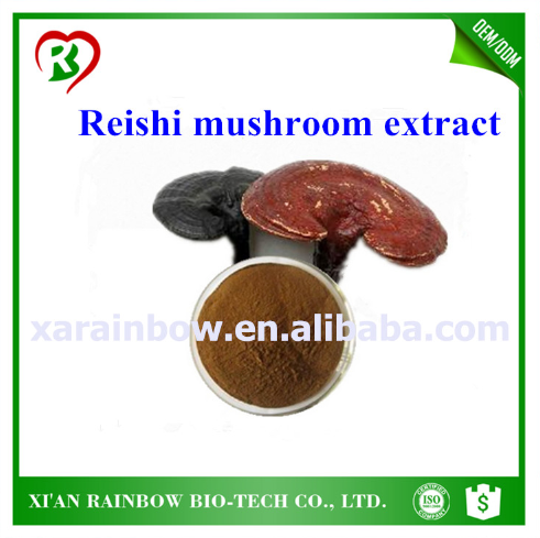 natural red reishi mushroom extract wholesale organic reishi mushroom extract powder growing reishi mushrooms
