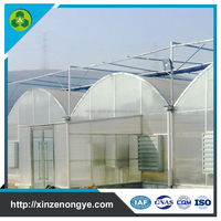 Xinze Agricultural Plastic Film Industrial Greenhouse