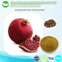 professional manufacture pomegranate bark extract powder for Anti-cancer