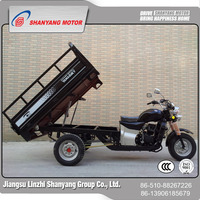 New designed gasoline motor cargo tricycle with cabin /cabin 3 wheeler cargo motorcycle