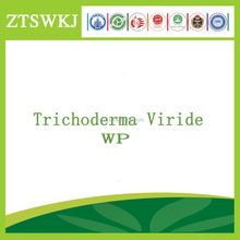 Biological pesticide Trichoderma viride WP
