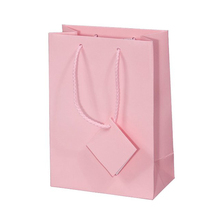 Exquisite Home Collection Paper Bag Decorative Shopping Bag with Message Tag Multicolor Choice