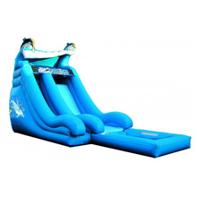 commercial grade Dolphin Splash Down inflatable water slide/ waterslide/ wet dry slide for party
