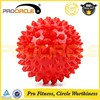 PVC Fitness Ball Gym Ball Massage Ball