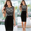 2017 Hot Sale New Fashion Clothes Elegant Womens Plus Size Formal Office Lady Career Dress Pencil Bodycon Sexy Dress