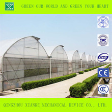 China customized cheap Industrial/vegetable seed greenhouse