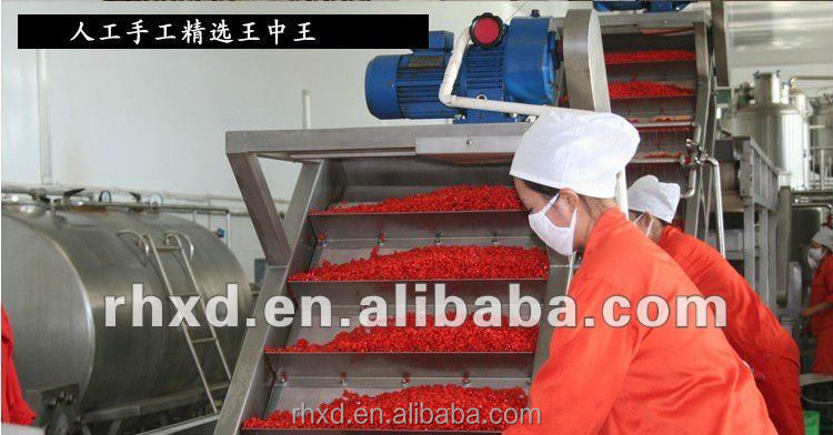 Factory dried goji berry/wolfberry for global market