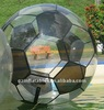 (Qi Ling)inflatable football water ball