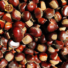Supply 2017 New Crop Yanshan Chinese Fresh Chestnuts