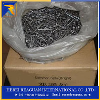 high quality bright common wire nails/bulk bright common wire nails