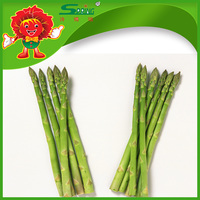 fresh asparagus from China ensure price manufacturer Buy cheap