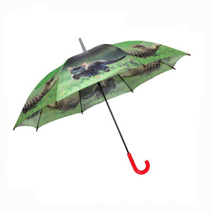 Manual Open Plastic Handle kid's umbrella With Cartoon Picture