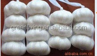 Chinese garlic in low price wholesale snow white garlic