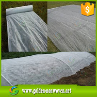Factory supply pp spunbond nonwoven fabric for plant covering fruit