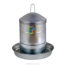 Galvanized chicken feeder or drinker
