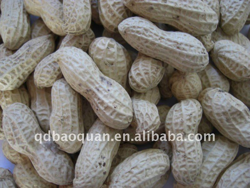 snow sticky rice coated peanuts