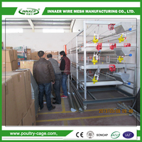 Agricultural Equipment chicken layer cage used in poultry farm