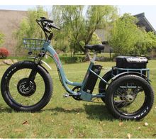 electric trike/tricycle/electric three wheeler bike/electric pedicab
