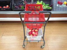 Simple Trolley for Elderly Shopping Supermarket handicapped cart