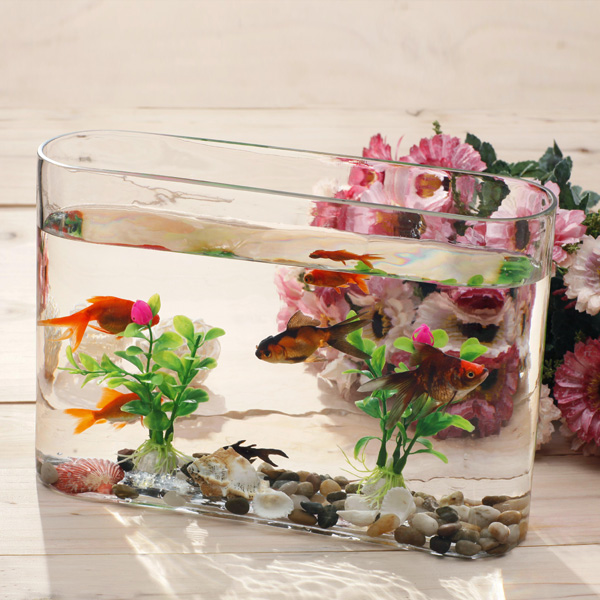 Mini Clear Glass Fish Bowl// Customized goldfish Glass Aquarium Glass square fish tank