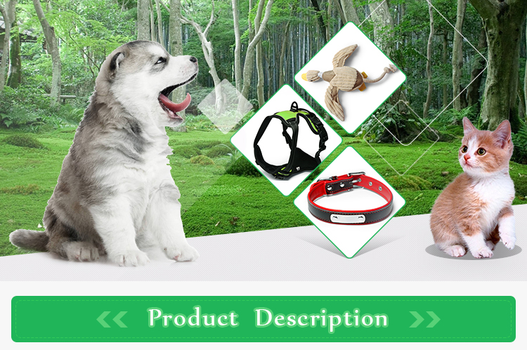 Eco-Friendly Dog Diner Adjustable Elevated Pet Feeder Raised Dog Double Bowls