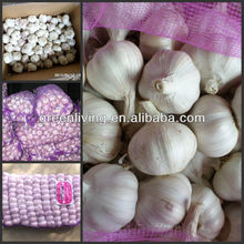 hot sale garlic / from China Garlic Capital / Aimee