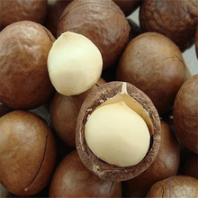 Raw Organic Macadamia nuts for sale