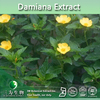100% Natural Sexual Product Damiana Extract 4:1~20:1--3WBE Supplier, Damiana Herbal Extract