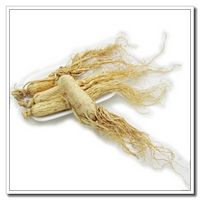 Provide OME china supplier white ginseng