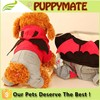 Hot sale demon and wing dog clothes puppy apparel
