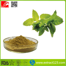 Manufacturer Supply Lemon Balm Extract