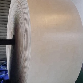 White Color EP315/3 12MPA Conveyor belt For South Africa Market